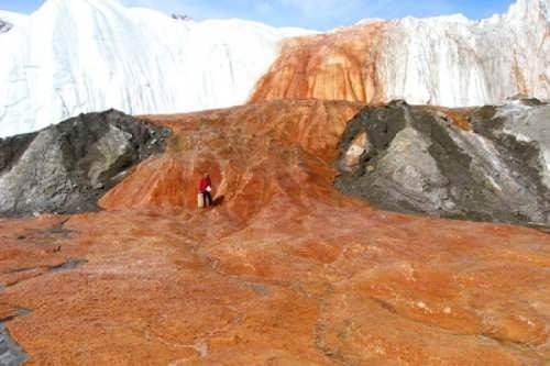 http://bizarreup.persiangig.com/bizarre/nature/most-scenic-places/low/Taylor-Glacier-Antarctica-600x399.jpg